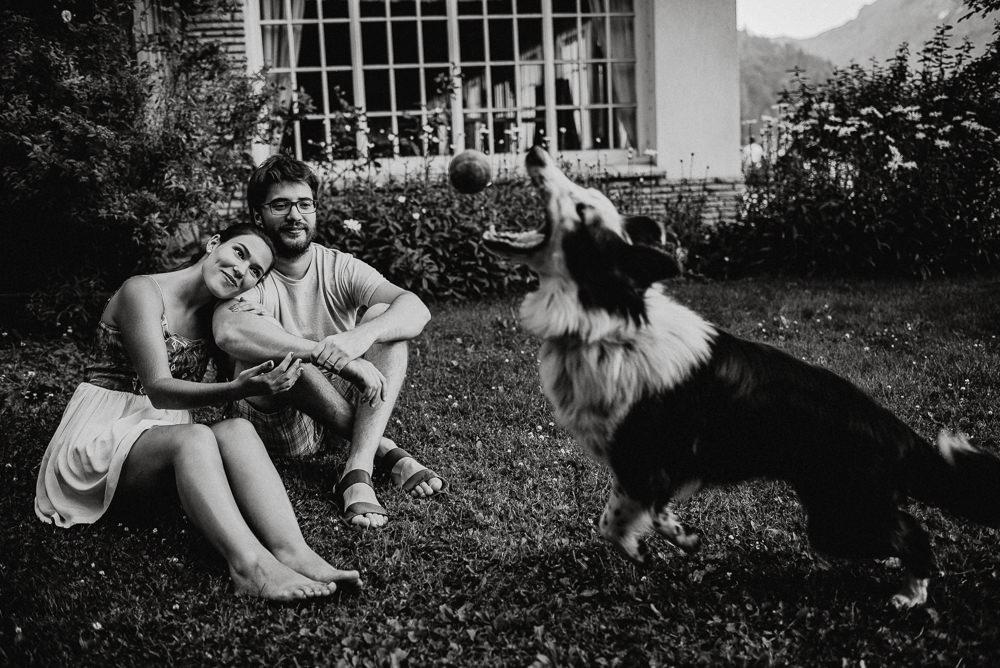 sesión de fotos con perros en bariloche