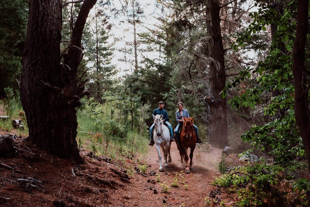 passeios a cavalo em bariloche horse
